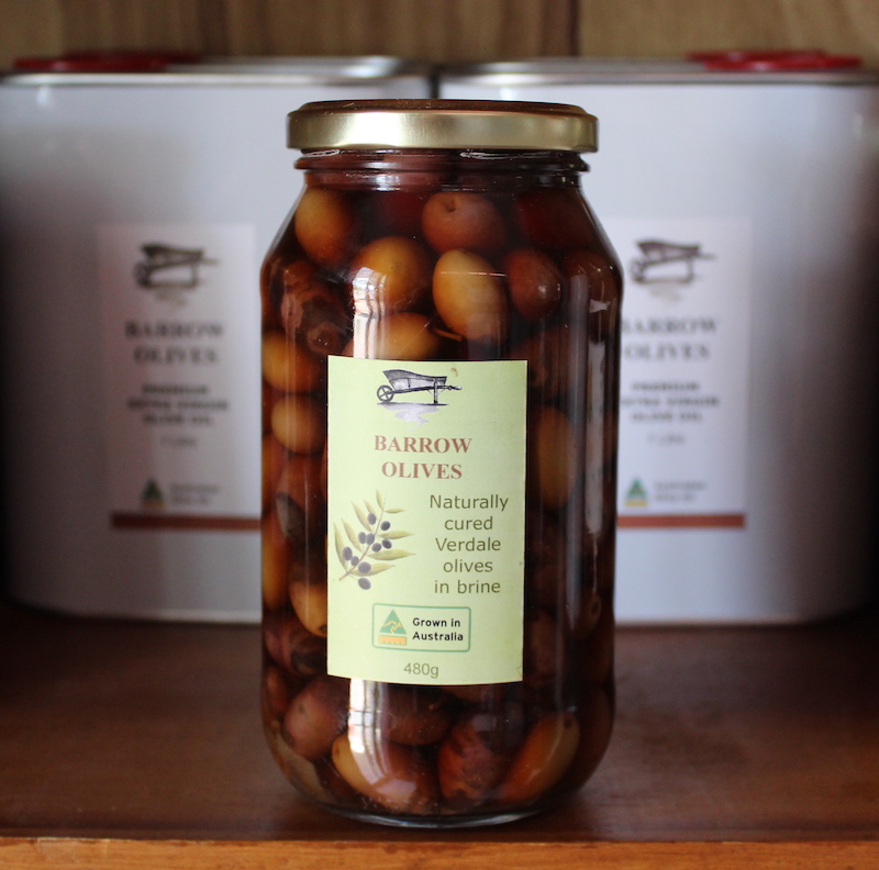Table Olives Cured in Brine 480g